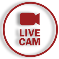 Livecam Grünleitennock